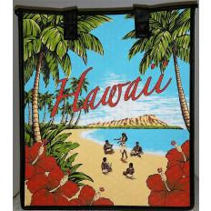 Large Hot Cold Bag Vintage Waikiki