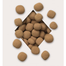 Chocolate Tiramisu Caramels 8 oz
